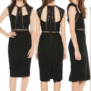 NWT Bardot Splice Lace Black Dress